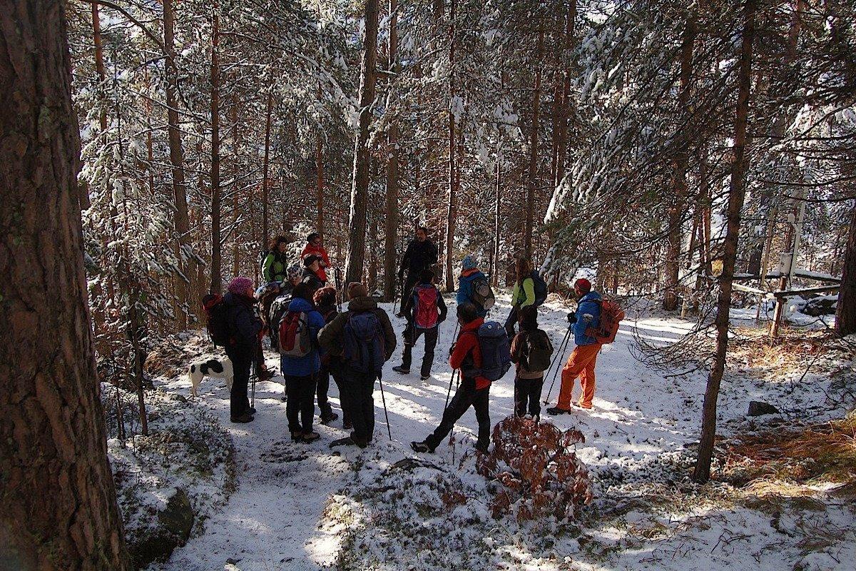 Saranno i Comuni di Châtillon, Pontey, Champorcher e Champdepraz a decidere sull'ampliamento del Parco naturale Mont Avic