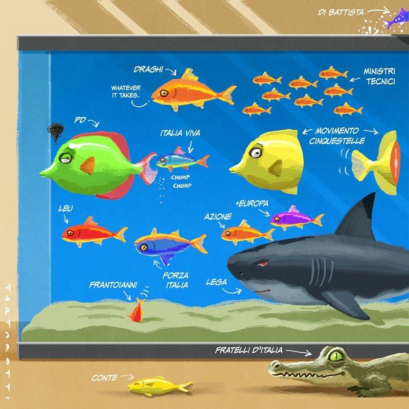 Il governo Draghi spiegato con gli acquari